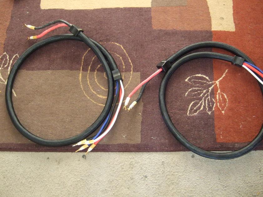 PS Audio XStream Statement Bi Wire Speaker Cables 2.5M