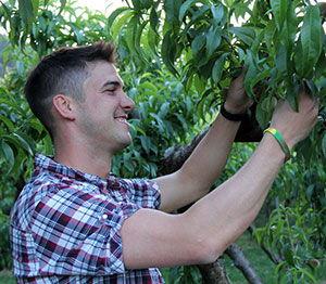 Steve Souto - Souto Farms Fresh BC Fruit