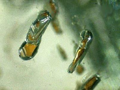 garnet inclusions in diamonds