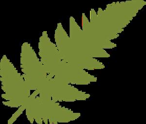 Fernbrook Family Center logo