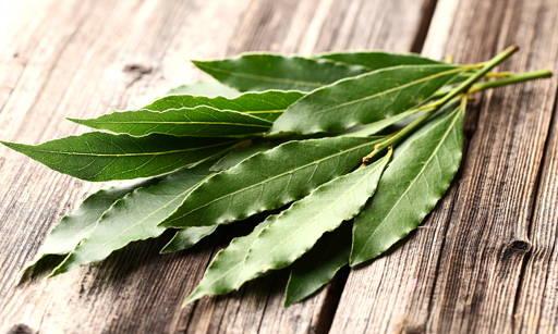 Natural Laurel Oil