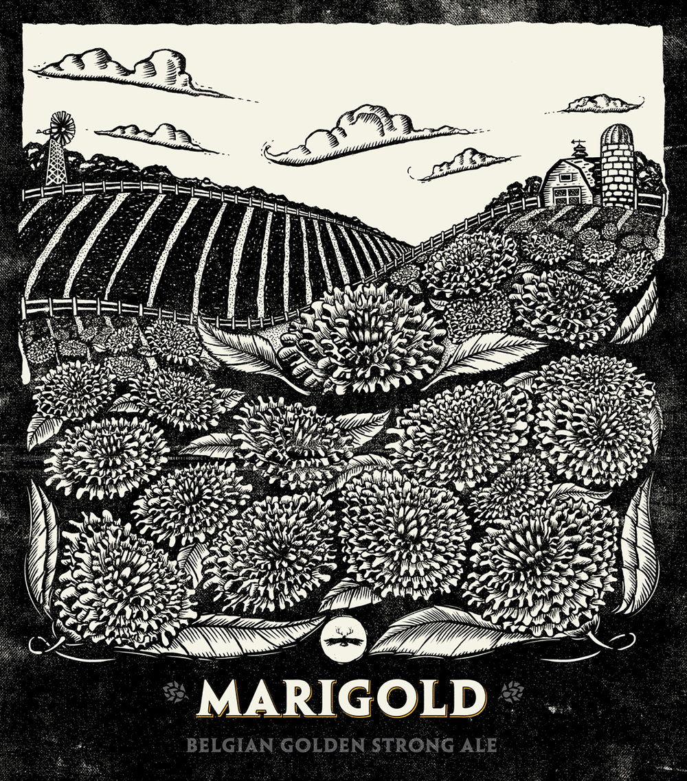 LL_Marigold_Illustration_1600px.jpg