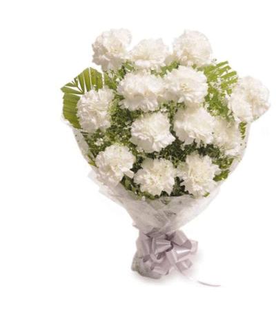 Bangalore Flowers White Carnation Flowers