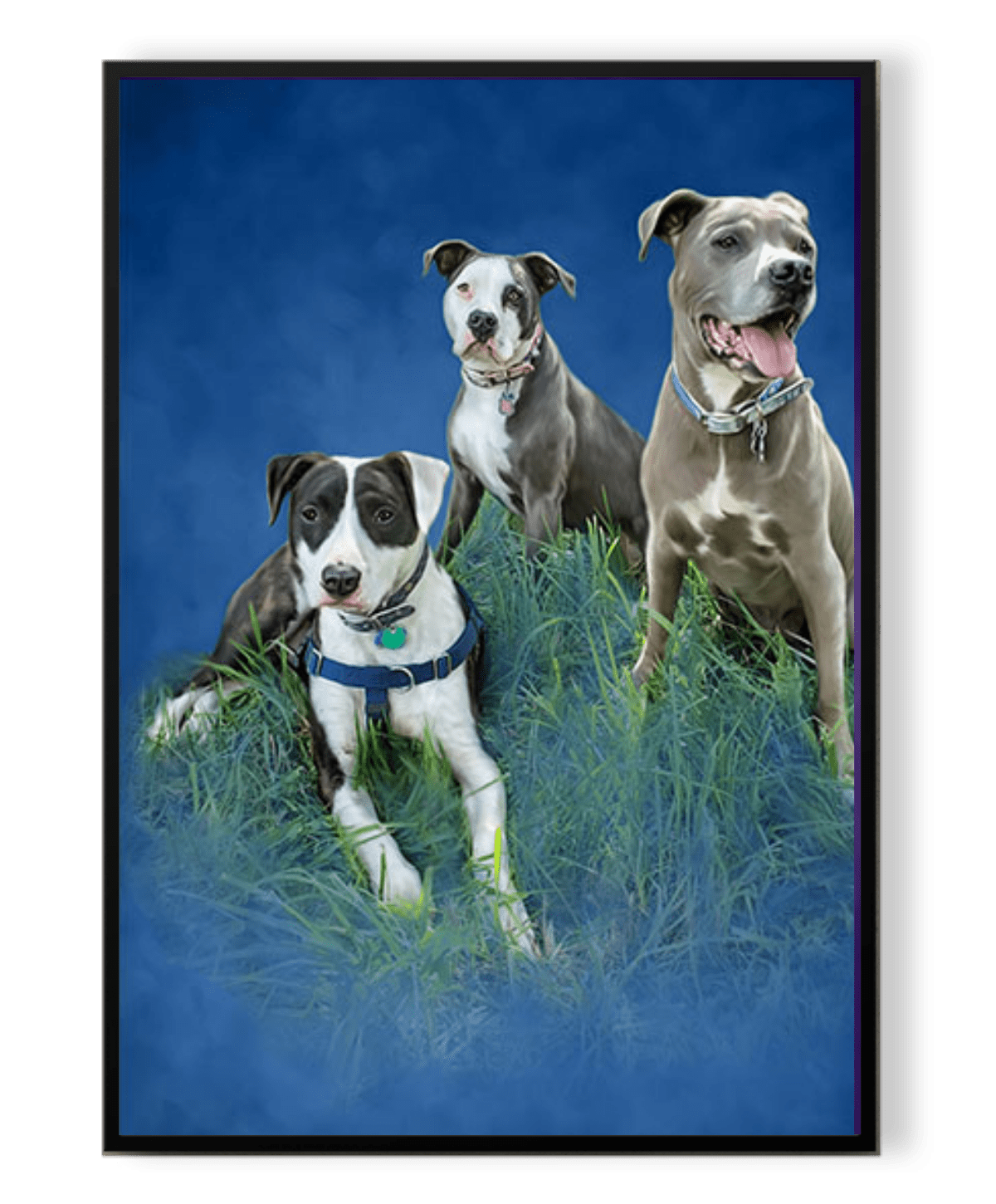 Three dogs on inside a frame with blue background