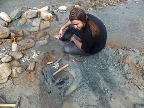 fieldwork palaeontological dinosaur excavation