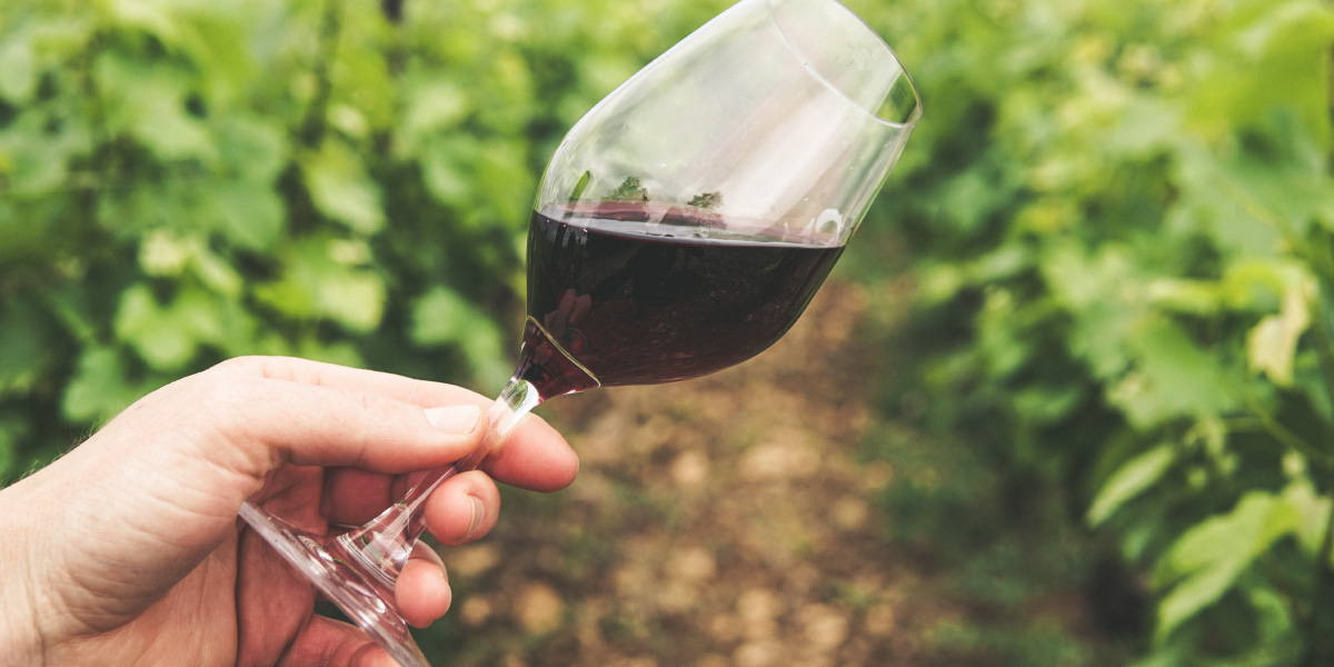 Head tilting a glass of red wine highlighting the importance of swirling while tasting wine.