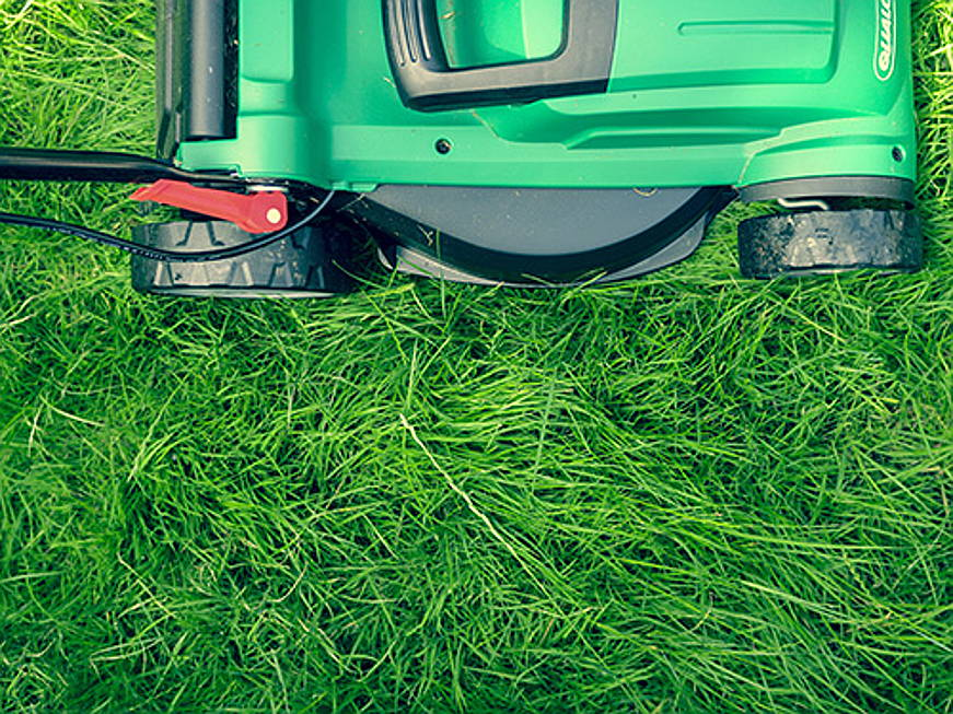 Zug - Smart gardens offers plenty of convenience and opportunities to save money. Learn everything you need to know about mowing robots, irrigation and much more!