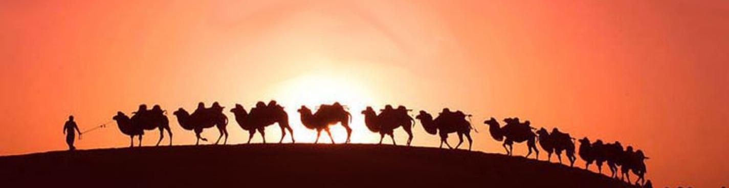 Экскурсия в город-оазис Аль-Айн