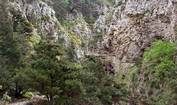 Ущелье Имброс (из Ретимно)