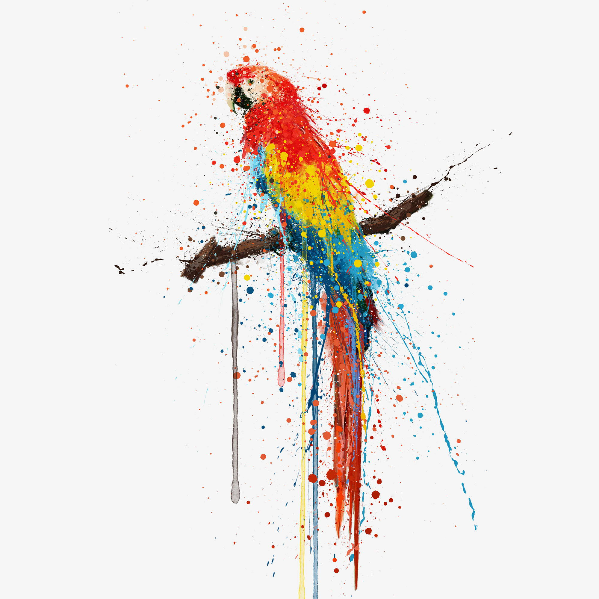 Scarlet Mccaw Parrot perched on a branch Wall Art Print.