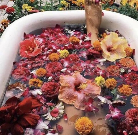 Eine Volle Badewanne mit vielen verschiedenen Blütenblätter auf dem Wasser.