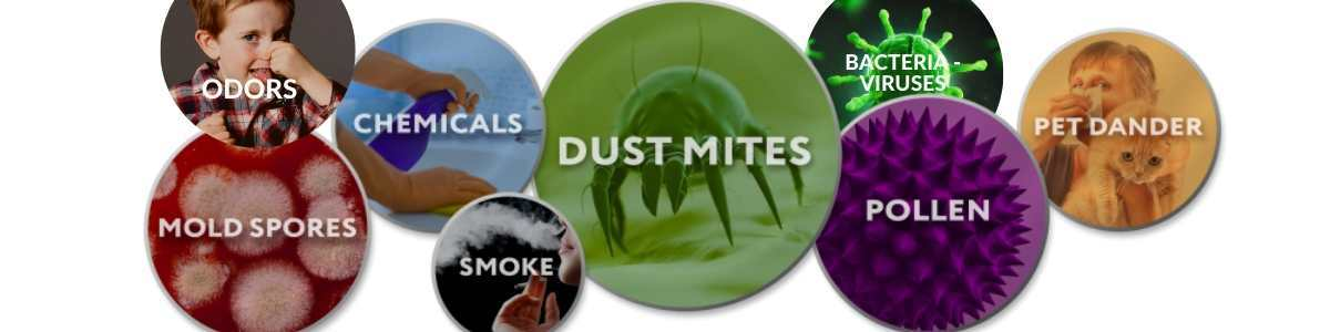 air pollutants that we want to get rid of are dust, smoke, mold spores, chemicals, dustmites, bacteria viruses, pet dander, pollen