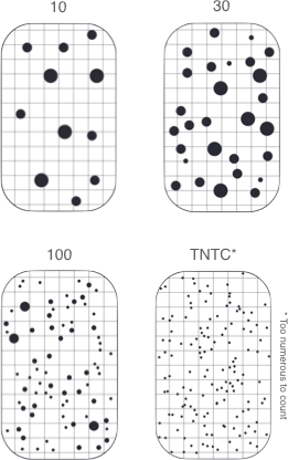 Schema of comparison charts showing the number of colony-forming units