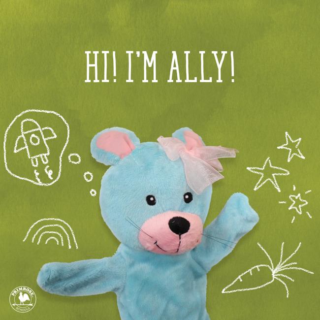 Ally - Responsibility