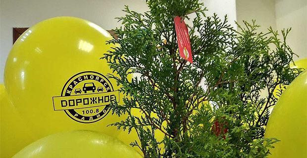 «Дорожное радио» бесплатно раздает саженцы красноярцам - Новости радио OnAir.ru