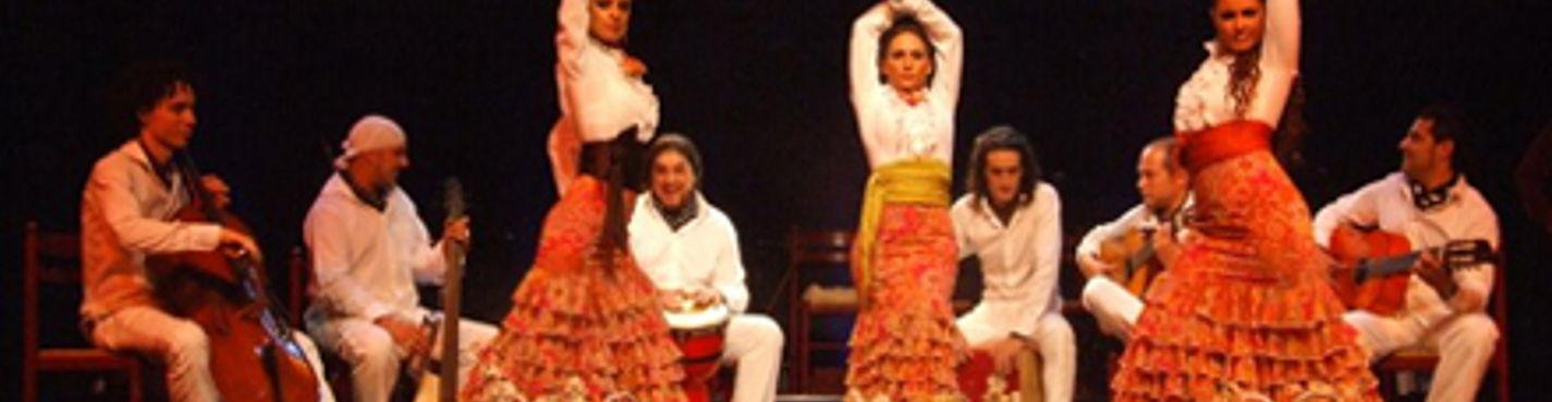 """Шоу фламенко """"El Cordobes"""""""