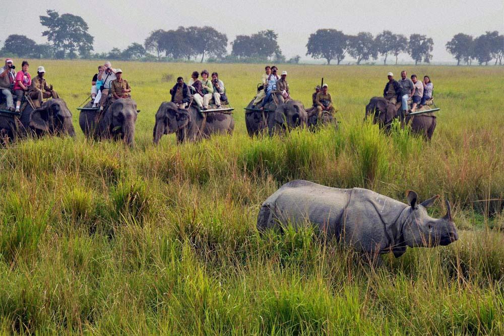 Travel Agent in Assam