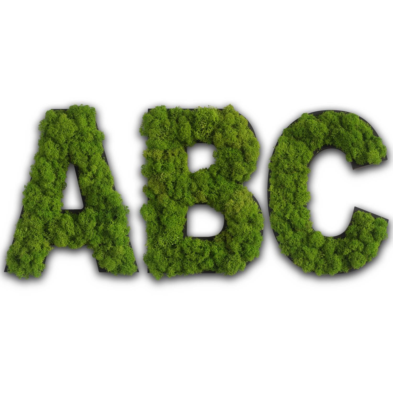 Finestgreen Moosbilder Ballenmoos Grüne Wände