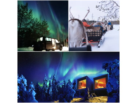 SEE THE AURORA IN LAPLAND -  JANUARY 2019