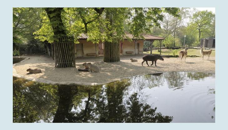 zoo krefeld südamerika anlage