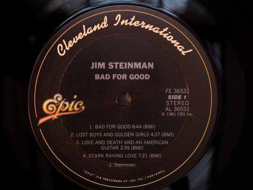 Jim Steinman - Bad for Good promo lp & ep