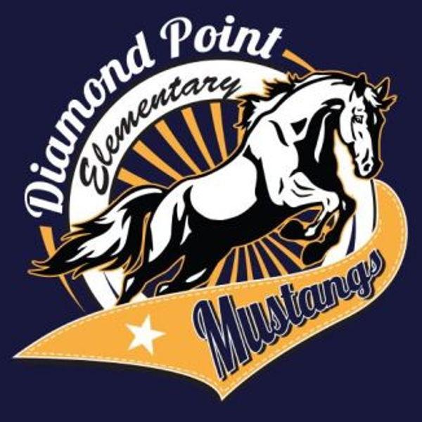 Diamond Point Elementary PTA