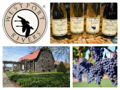 Private Vineyard Tour & Tasting for 10