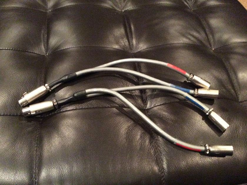 Burmester  Audio Silver Mono Block Pr MonoBlock Y Cables