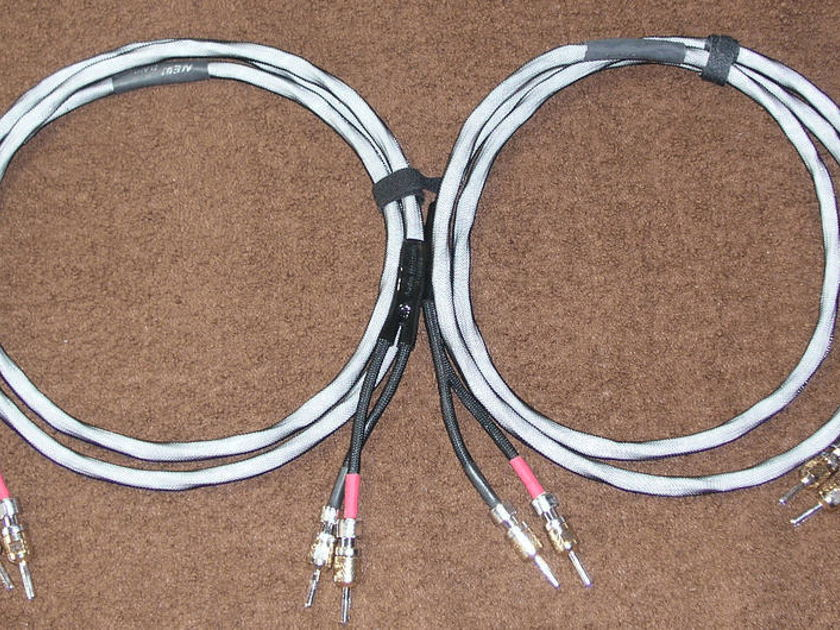AUDIO HORIZONS JOSEPH CHOW NEW DAWN SPEAKER CABLES