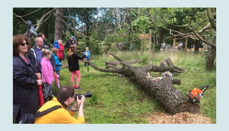 naturzoo rheine lemurenwald