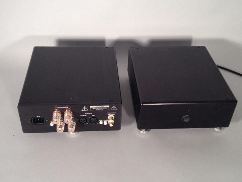 Emerald Physics EP100.2SE  Special Edition Power Amplifiers (Pair)