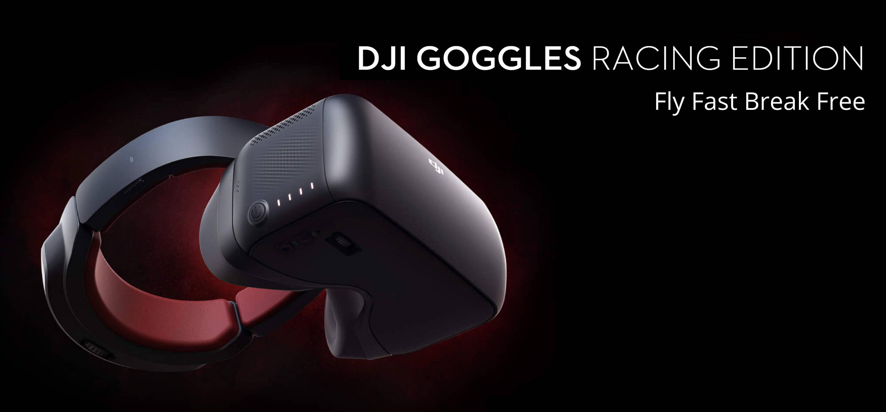 DJI Goggles RE