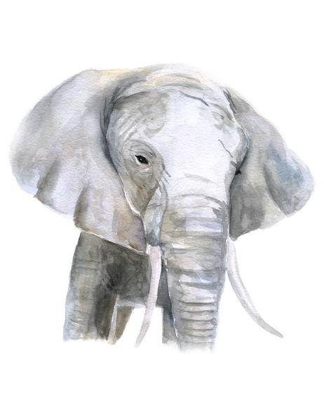 """Постер """"Африканский слон"""""""