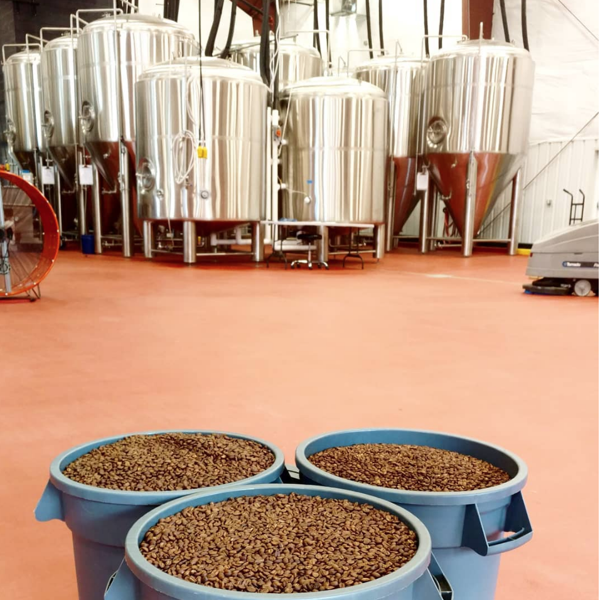 Barrel of roasted beans in front of brewing equipment