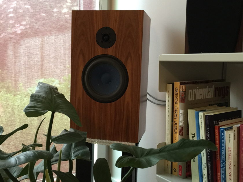 Audio Note UK AN-J SPe Hemp Speaker