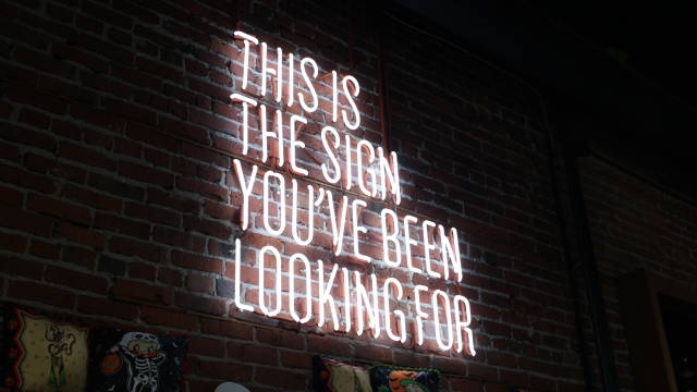 """Neonskilt som siger """"This is the sign you've been looking for""""."""