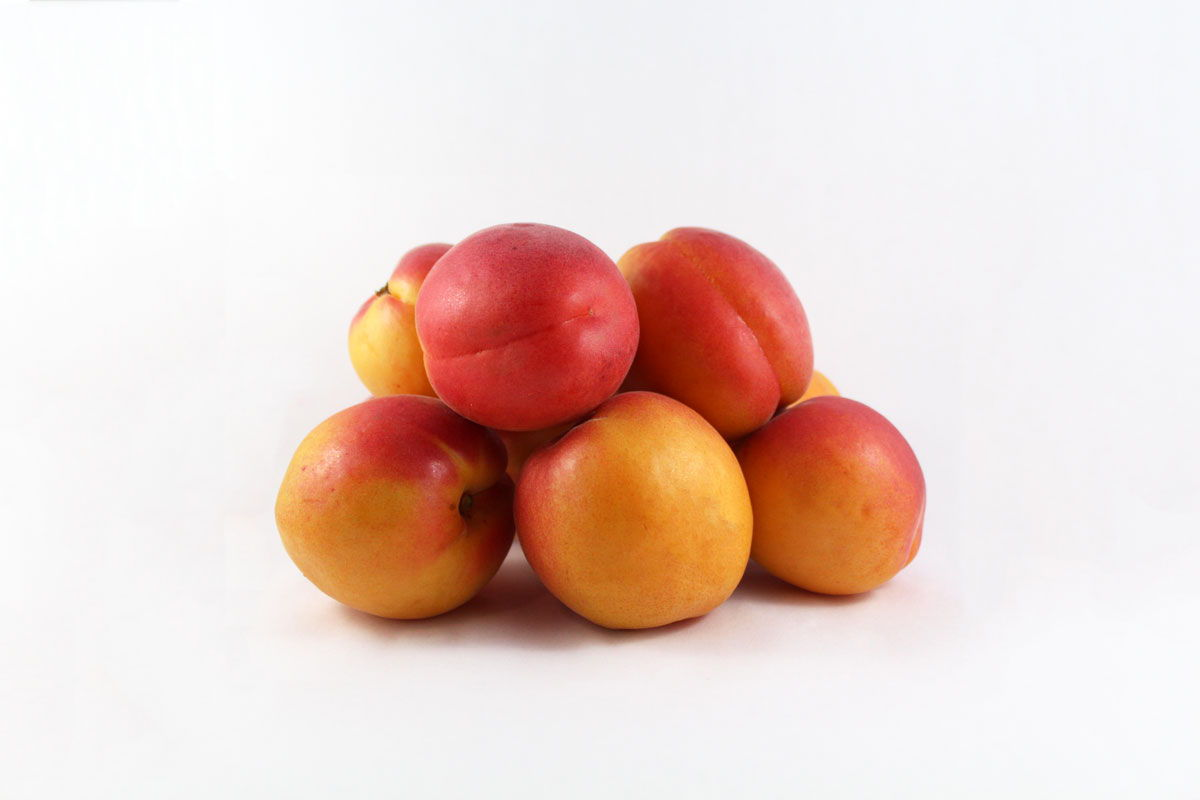 Apricots - Souto Farms Fresh BC Fruit