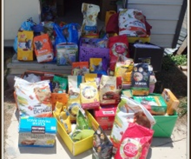 Display of all the pet food collected during the precious pets supply drive