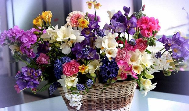 Астраханцы смогут поздравить своих мам с праздником в прямом эфире Love Radio - Новости радио OnAir.ru