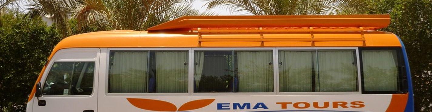 Трансфер из аэропорта — для группы до 18 человек (Шарм-Эль-Шейх, Египет)