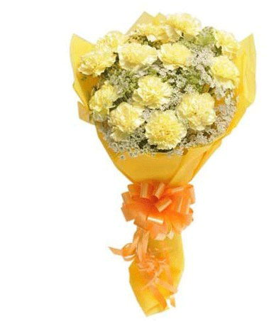HF Special Yellow Carnations