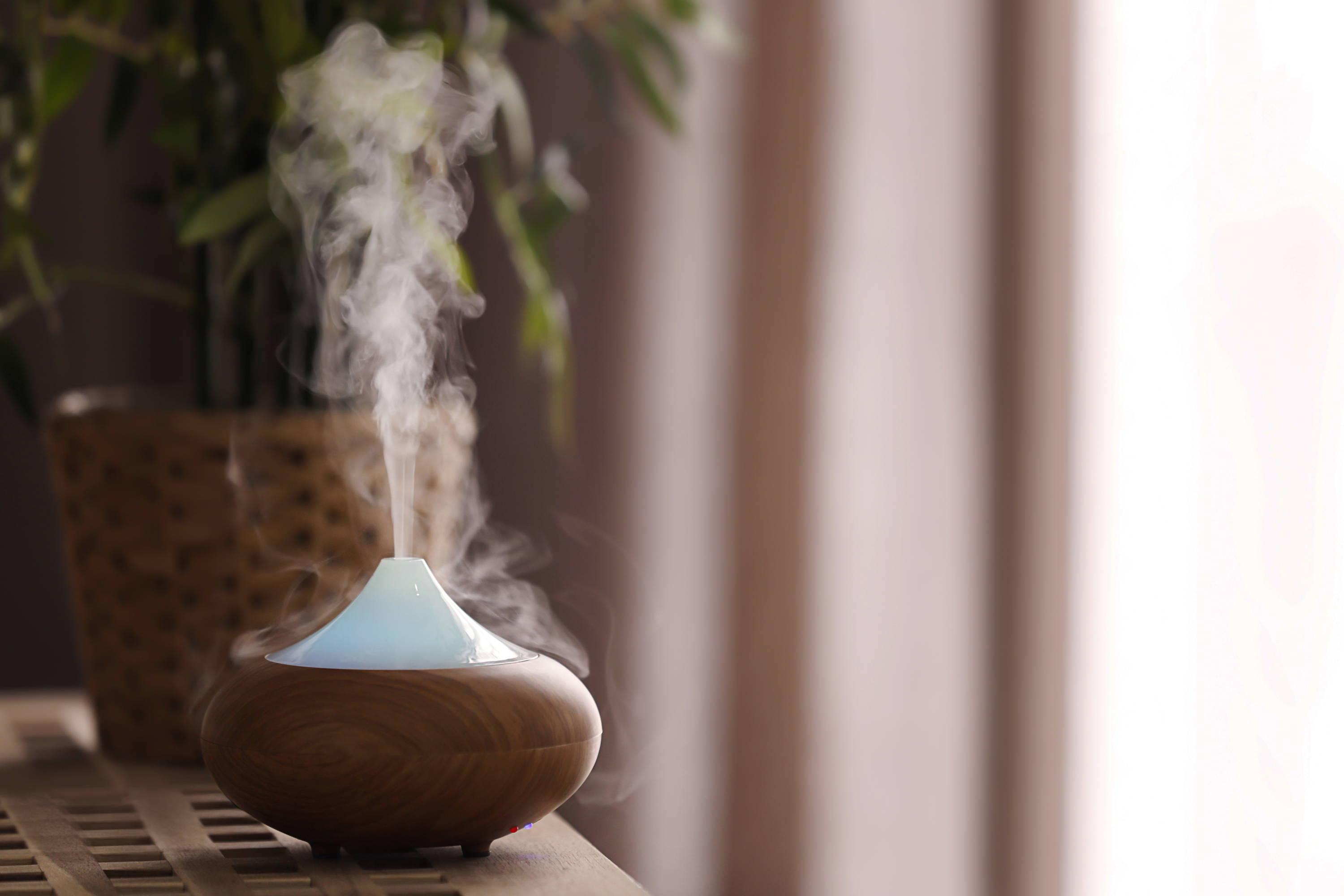 diffuser calm relax essential aroma plant
