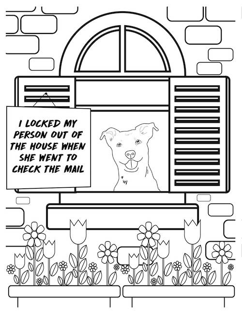 i locked my person out dog coloring page