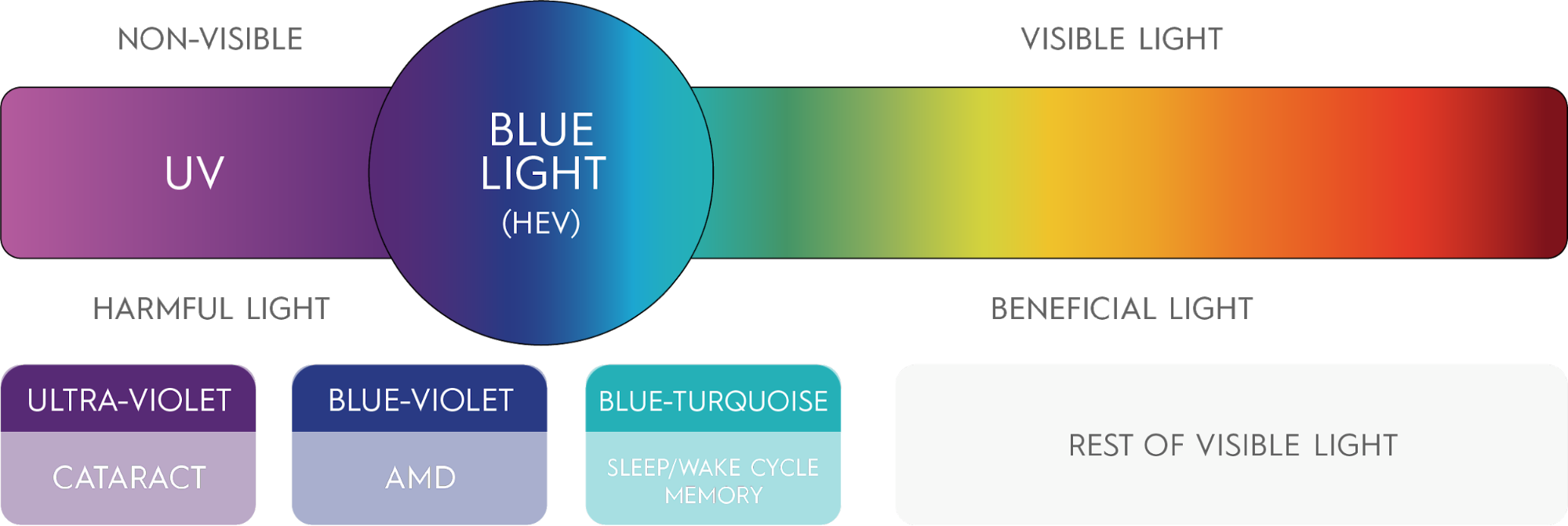 Natural blue light is part of the balanced spectrum of white light from the sun and this can have beneficial effects. Artificial blue light from screens and other LED lights, however, has a harmful effect on our health at any time of day.