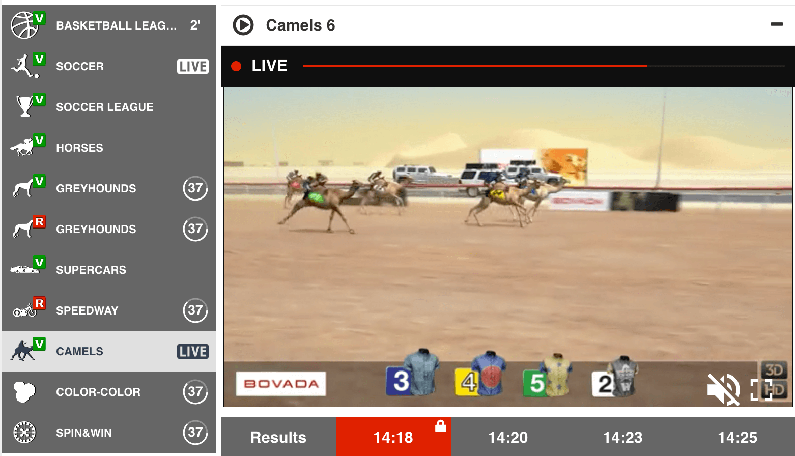 camel race at bovada