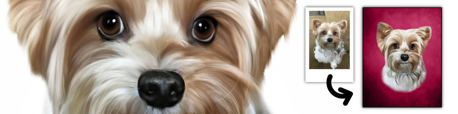 Turn your pet into a beautiful portrait