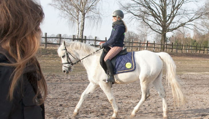 lister ponyschule reittraining