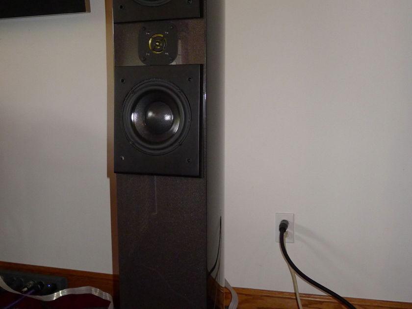 Acoustic Zen Adagios Black Pearl, Custom Outriggers
