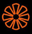icon vitamins colour orange