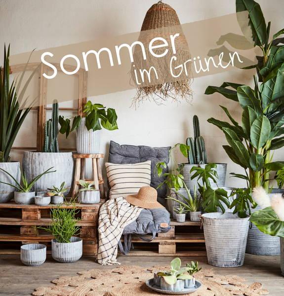 Startseite Sommer im Grünen
